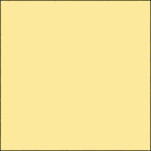 Savage  Widetone Seamless Background Paper 41-12