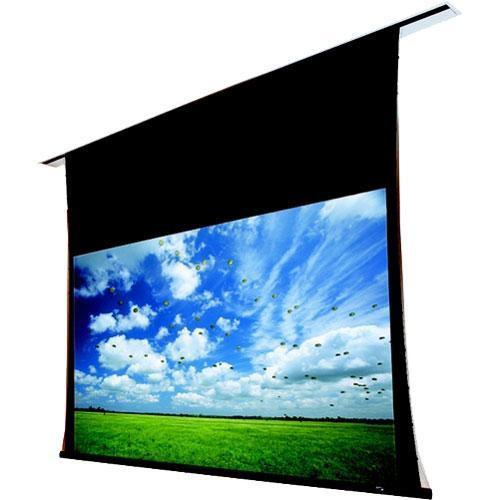 Draper 102165 Access/Series V Motorized Front Projection Screen
