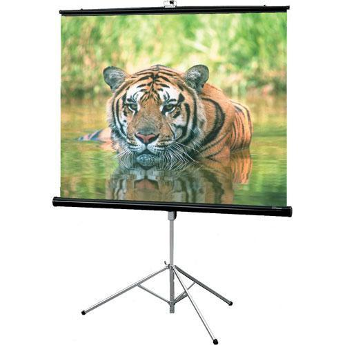 Draper 216004 Consul Portable Tripod Screen 216004