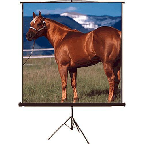 Mustang SC-T100D43 Tripod Front Projection Screen SC-T100D43
