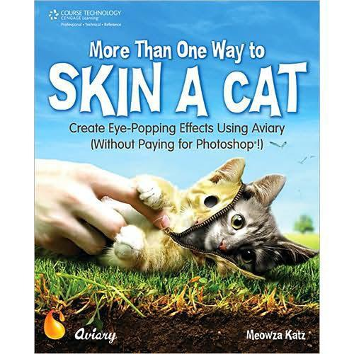 Cengage Course Tech. Book: More Than One Way to Skin 1598634720