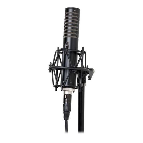 Royer Labs  R-101 Ribbon Microphone R-101