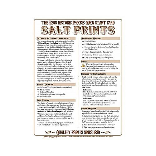 F295 Historic Process Laminated Reference Card for Salt 29501