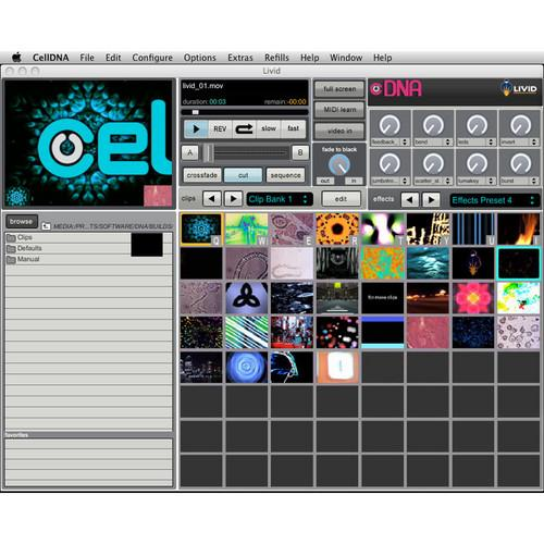 Livid Instruments  CellDNA VJ Software LVDNA