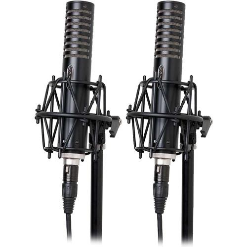 Royer Labs  R-101-MP Ribbon Microphones R-101-MP