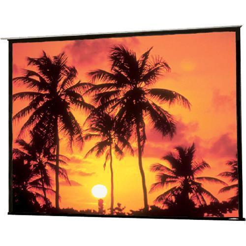 Draper Artisan/Series E Motorized Front Projection Screen