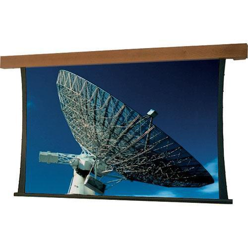 Draper Artisan/Series V Motorized Projection Screen - 60 x