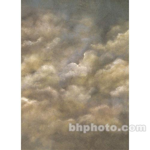 Studio Dynamics 8x16' Canvas Background SM - Old Master 816SOLMA