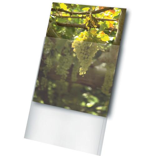 Print File Archival Storage Standard Photo Sleeve for 11 x 1164