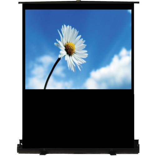 Recordex USA TheaterNow! Portable Pull-Up Screen 803080
