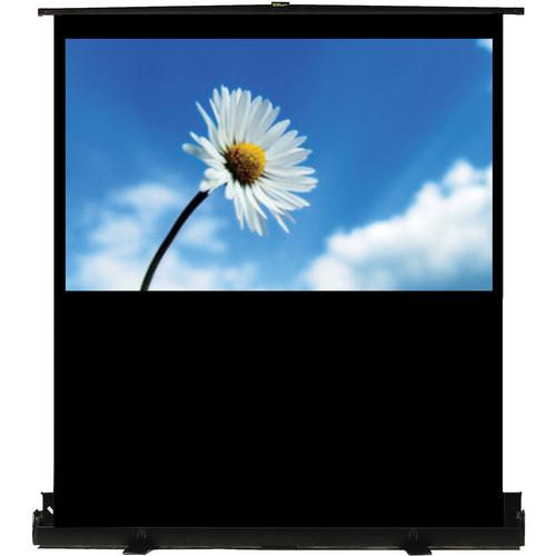 Recordex USA TheaterNow! Portable Pull-Up Screen 809090
