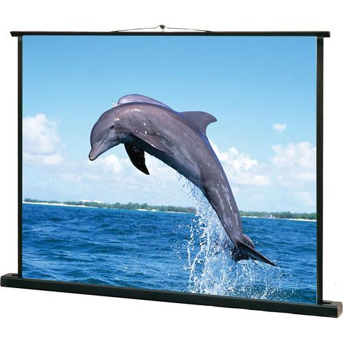 Mustang SC-P40D43 Portable Screen (33 x 26