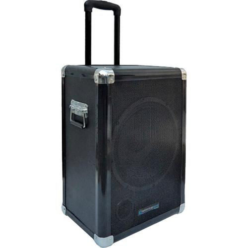 Technical Pro  12'' Portable Subwoofer WASP12SUB