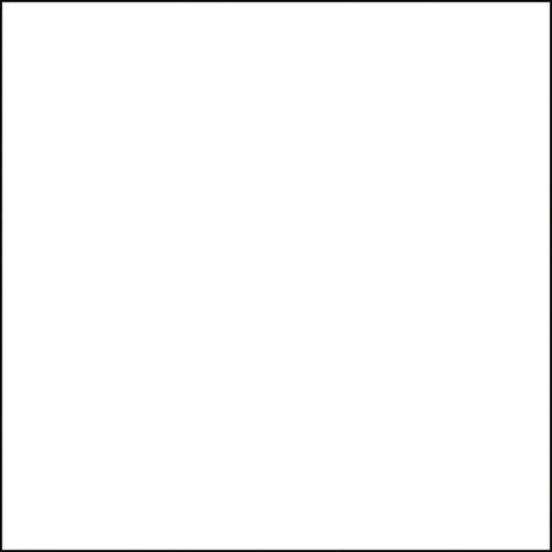 Interfit Italian Series Background (White, 10 x 10') INT505S