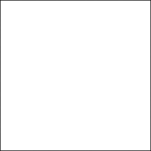 Interfit Italian Series Background (White, 10 x 20') INT505L