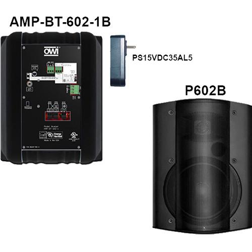 OWI Inc.  AMP-BT-602-2B Kit of Two AMP-BT-602-2B