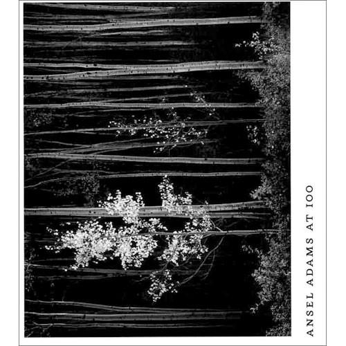 Little Brown Book: Ansel Adams at 100 (Hardcover) 9780821225158