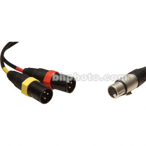 Remote Audio 5-Pin Stereo XLR Female to Dual XLR Male CAXSTE
