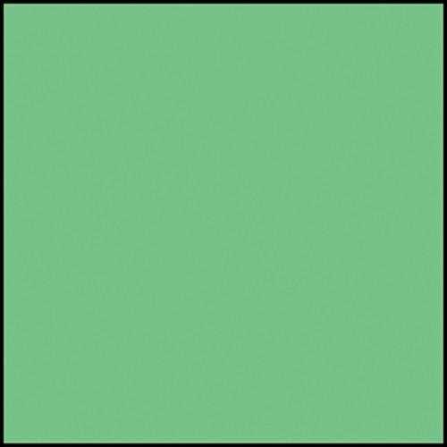 Rosco Permacolor - Industrial Green - 2x2