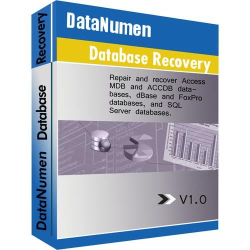 DataNumen Advanced Database Recovery (Download) ADBRFULL