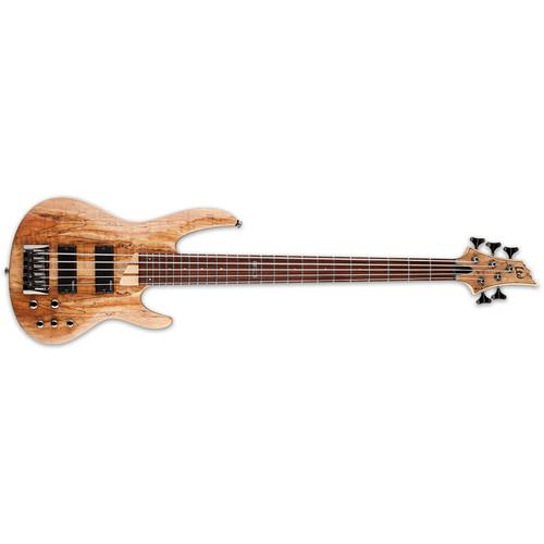 ESP LTD B-205SM 5-String Electric Bass (Natural Satin) LB205SMNS