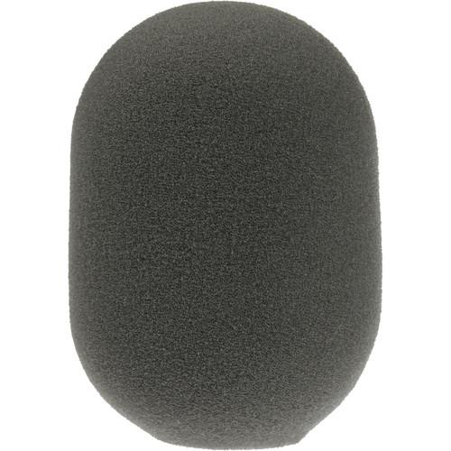 Electro-Voice 376 Windscreen/Pop Filter F.01U.117.910
