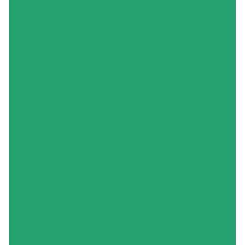 Westcott 10 x 12' Green Chromakey Sheet Background 5779