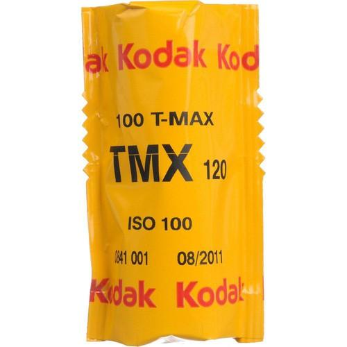 Kodak Professional T-Max 100 Black and White Negative 1978758