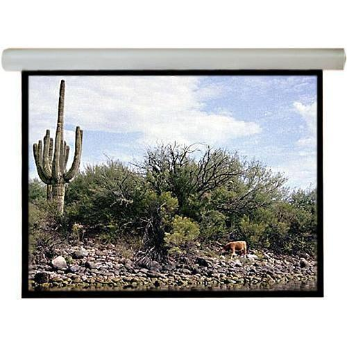 Draper Silhouette/Series M Manual Front Projection Screen 202166