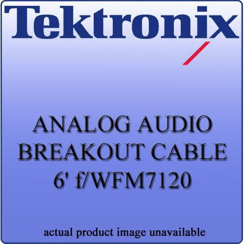 Tektronix WFM712062 Analog Audio Breakout Cable WFM712062
